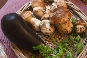 Aubergines grillèes aux Cèpes et au Pata Negra